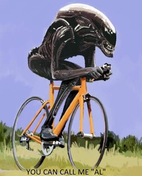 Anyone see 'Alien: Covenant'?-13331133_1351930214817981_471995275149705429_n.jpg