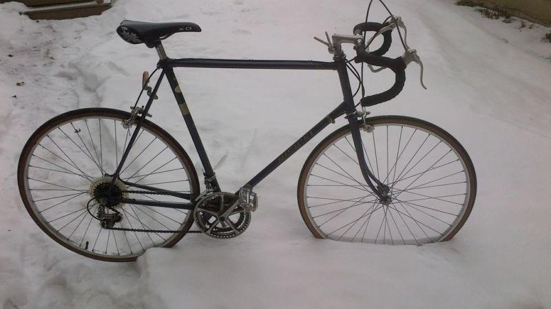 How Much Is This Worth Classic Nishiki Road Bike