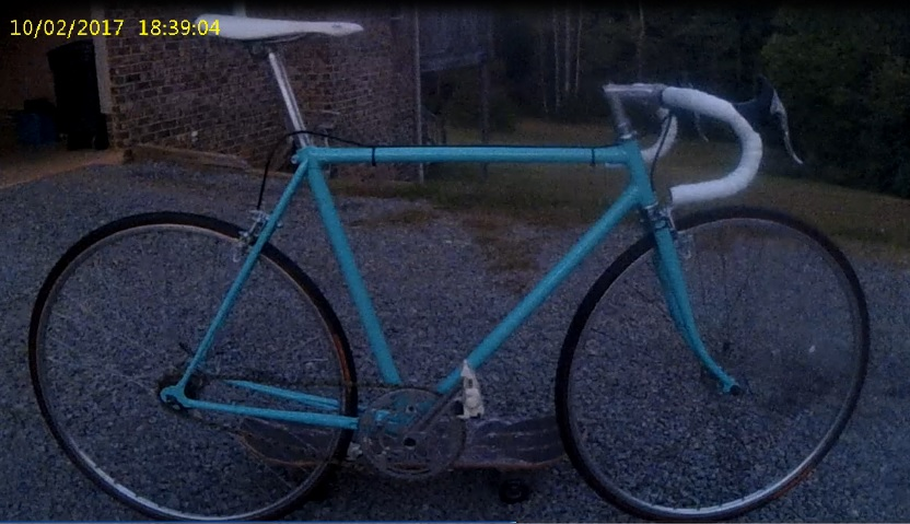 New addition to the family-bianchi-after-sample.jpg