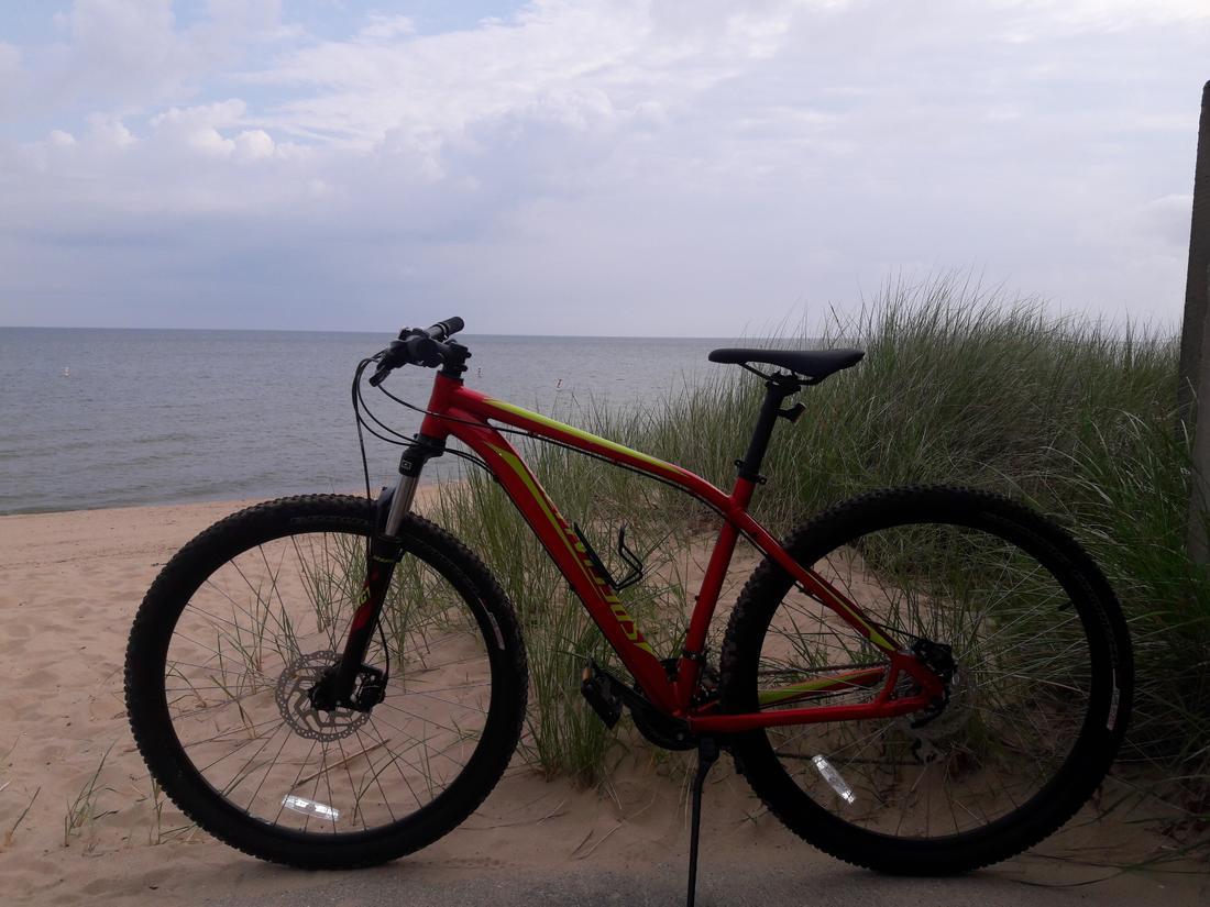 Name:  bike lake huron.jpg Views: 152 Size:  106.5 KB