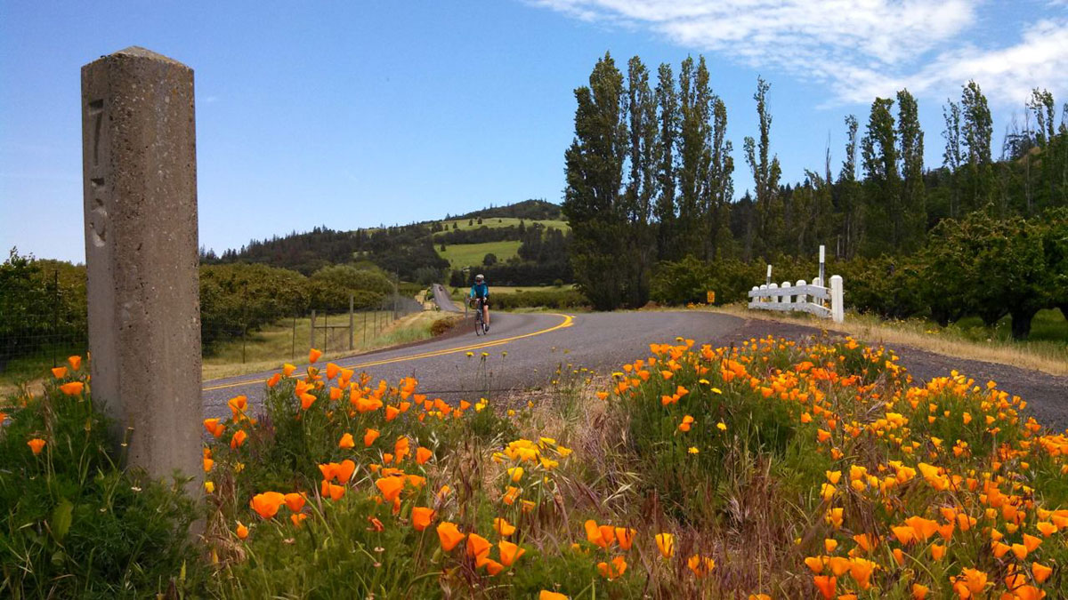 The route along Highway 30 reminded me of riding through Wine Country.