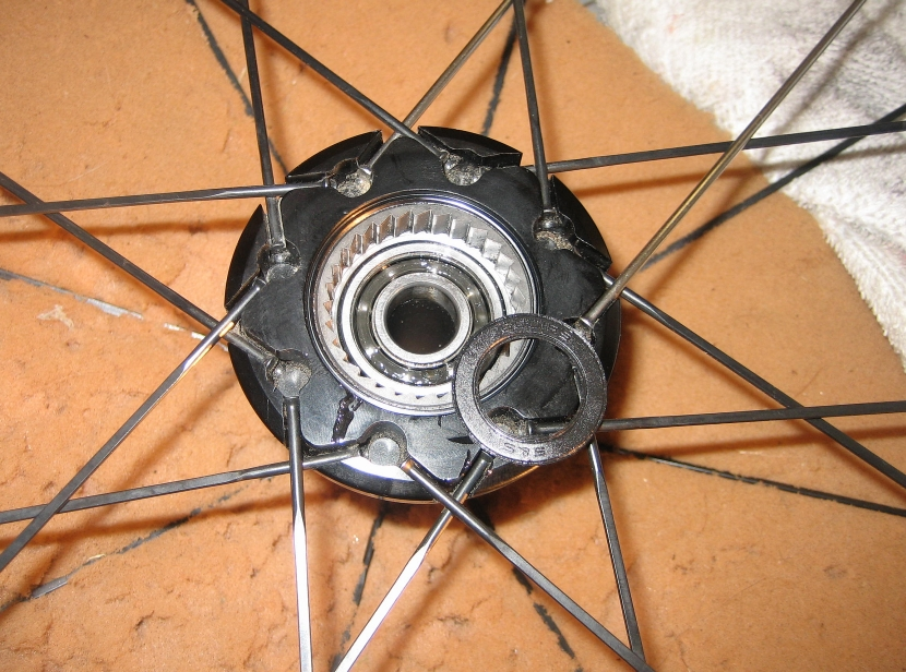 Specs on Fulcrum S4 Wheels-campy-fulcrum-female-ratchet-10-23-13.jpg
