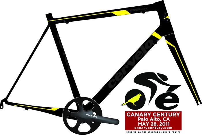 canary_century