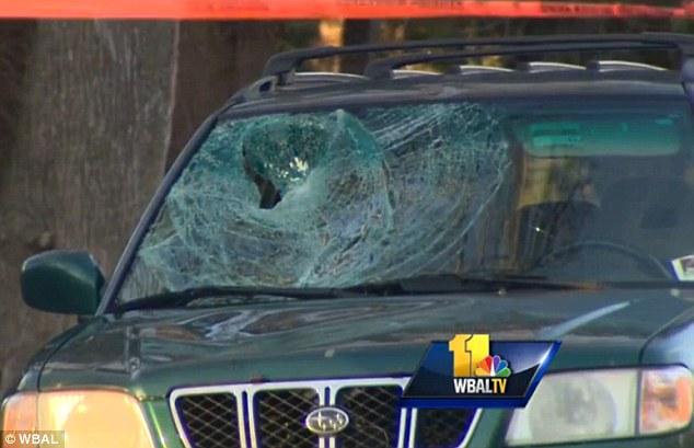 Tom Palermo, framebuilder, killed by car while riding-car-window.jpg