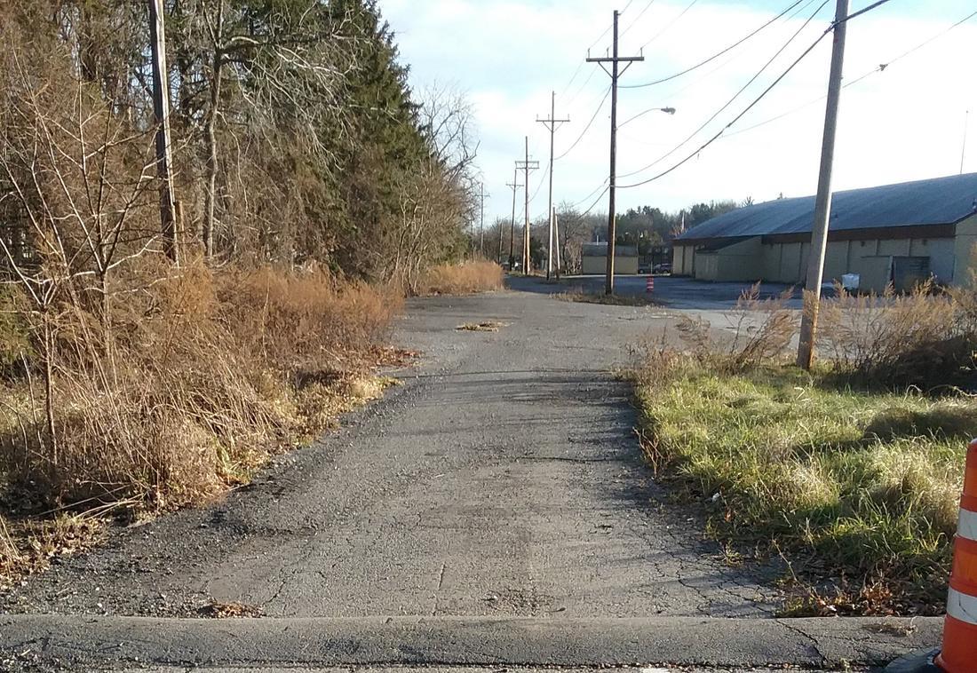 Rail Trail: NYC Auburn road trail-clover-s-1.jpg