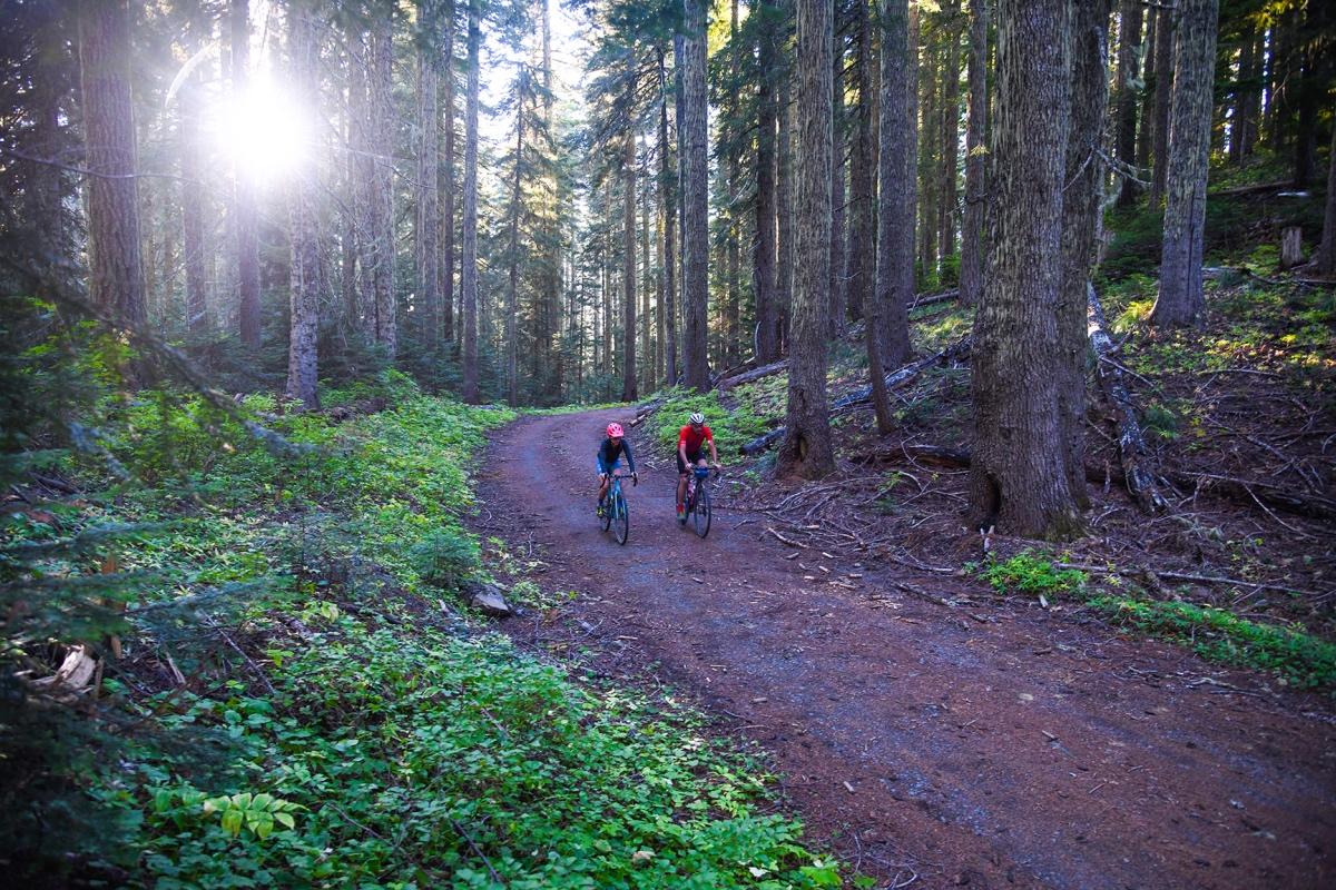 Oregon Trail Gravel Grinder