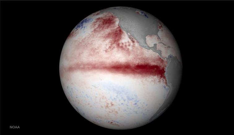 El Nino! Photo courtesy of Art's Cyclery