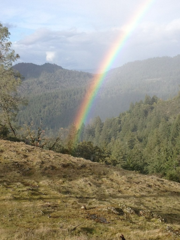 Viewing rainbows while racing Strava Segments