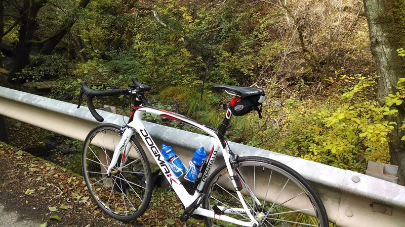 Post a pic of your Pinarello!-img_20151121_105546256_zpsipv037fe.jpg