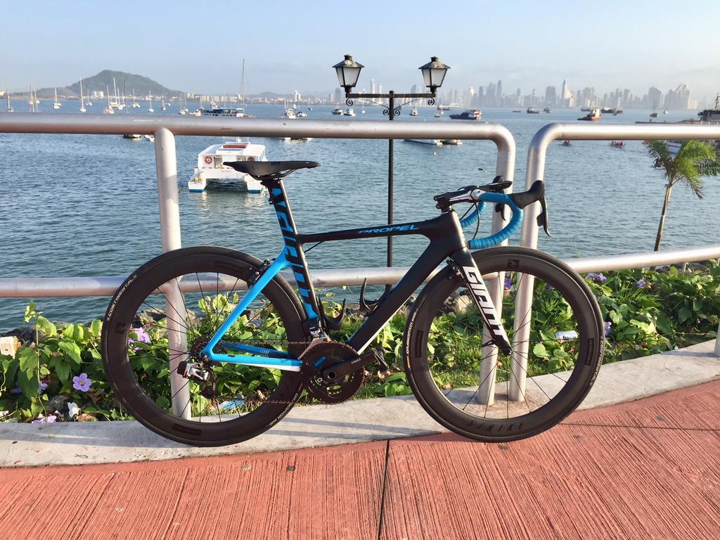 Post you Bike Pics Here! !-propel.last.jpg