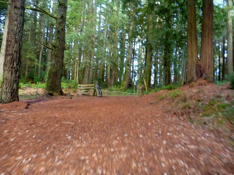 Randall Trail