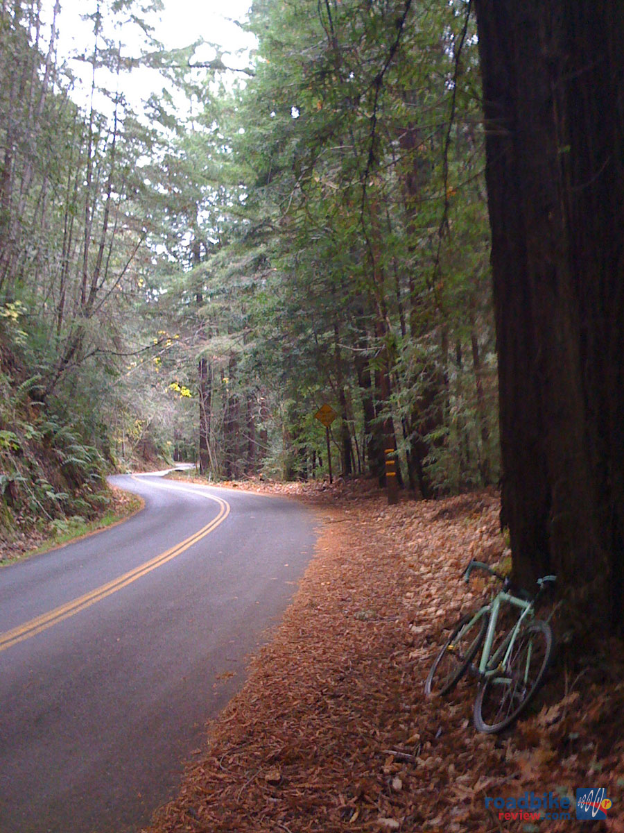 Santa Cruz Mountain Roads