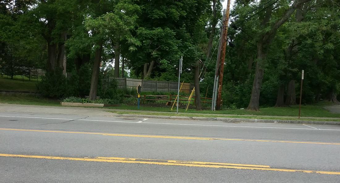 Rail Trail: NYC Auburn road trail-schoenauburn.jpg