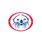 Sea Otter Logo