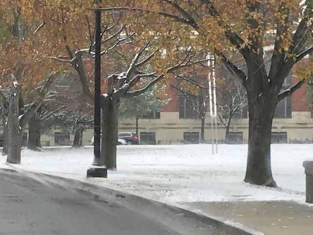 Winter's here ...-snow4.jpg