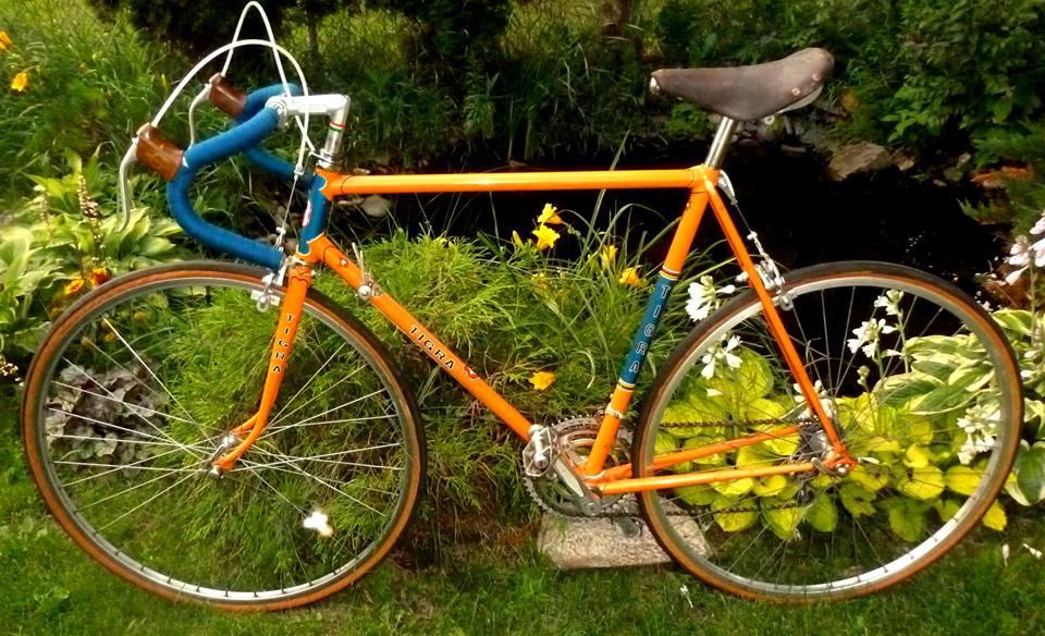 My Passion: Rebuilding Vintage Road Bikes-tigra.jpg