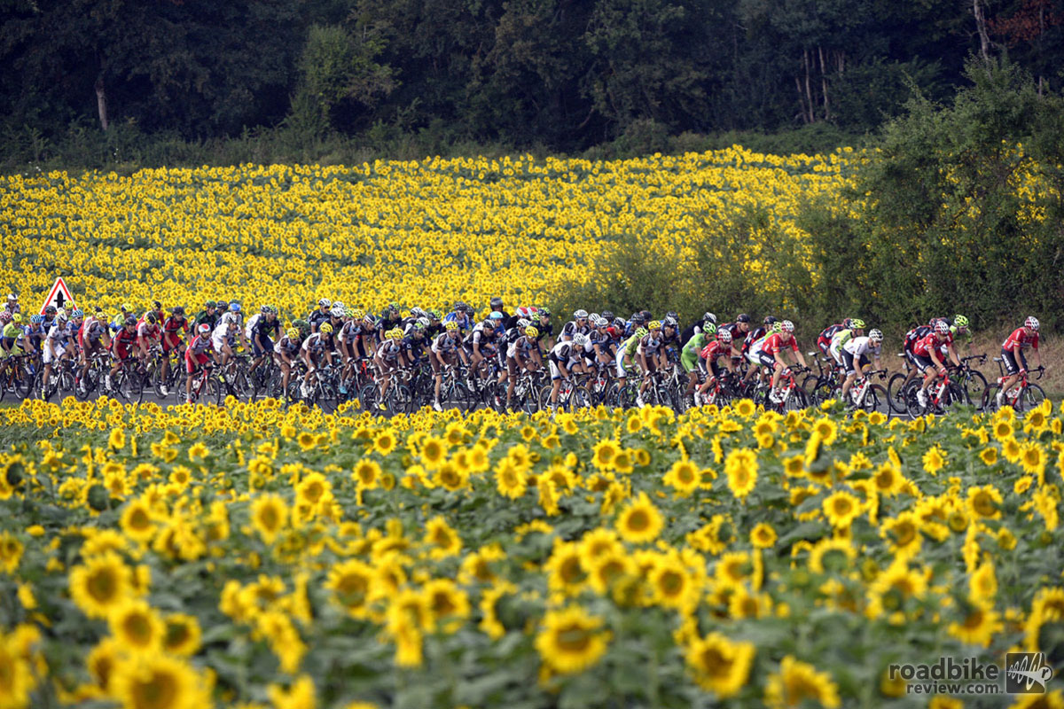 Stage 19 Gallery