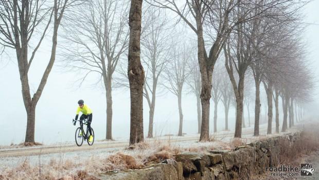 Winter Craft Trees