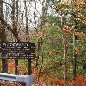 WoodwardSign